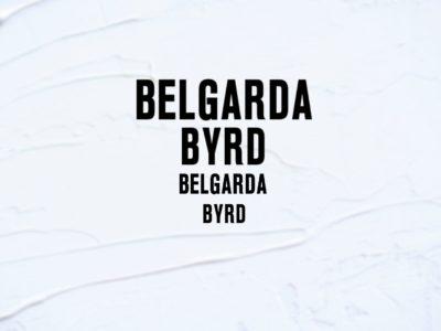 Belgarda BYRD Decal sticker pack