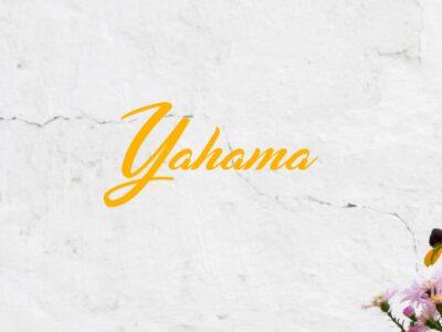 Classic Yamaha Text